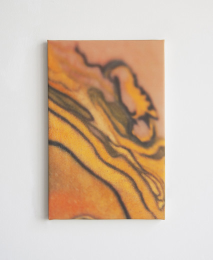 Loren-4,-photo-on-silk-and-canvas,-13′-x-20′,-2014